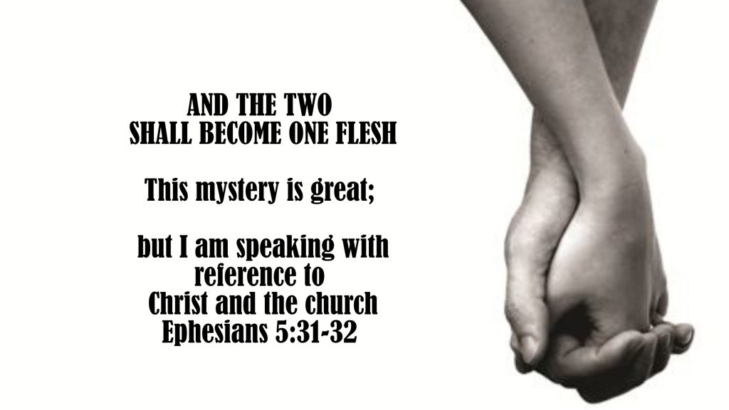 Two shall become one flesh